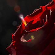 Love Rose Art Print