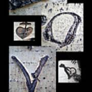 Love Written In The Trees 4 Art Print
