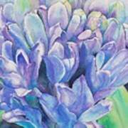 Lovely Lupine Art Print