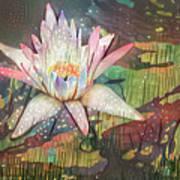 Lovely Waterlilies 2 Art Print