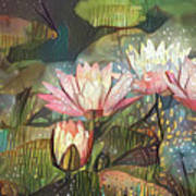 Lovely Waterlilies 7 Art Print