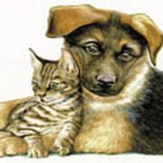 Loving Cat And Dog Art Print