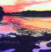 Low Tide On The Penobscot River Art Print