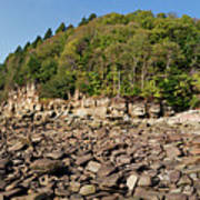 Low Tide Panorama Art Print