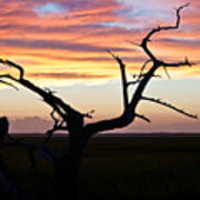 Lowcountry Sunset Art Print