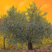 L'ulivo Tra Le Vigne Art Print