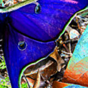 Luna Moth False Color Work One Art Print