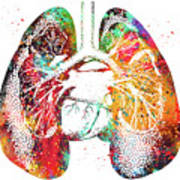 Lungs And Heart Art Print