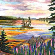 Lupine Sunrise Art Print