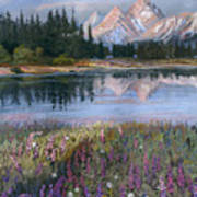 Lupines At Pilgrim Creek Art Print