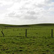 Lush Green Grass On The Cliffs Of Moher Art Print