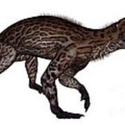 Lycaenops Dinosaur Walking, White Art Print