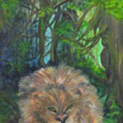 Lying Lion Art Print