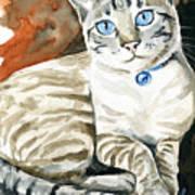 Lynx Point Siamese Cat Painting Art Print