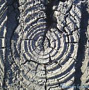M Scored Into A Log Art Print