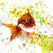 Ma Koi Art Print