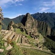 Machu Picchu And Bromeliad Art Print