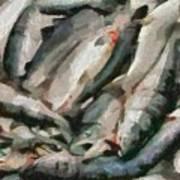 Mackerel Art Print