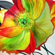 Macro Poppy Art Print