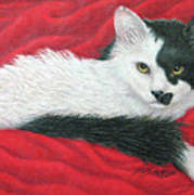 Maddie In Red Art Print