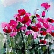 Maddy's Poppies Art Print by Anne Duke
