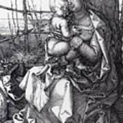 Madonna By The Tree 1513 Art Print