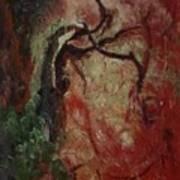 Madrona Tree Art Print