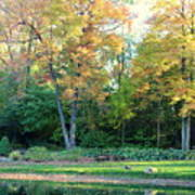Mae Stecker Park In Shelby Township Michigan Art Print