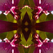 Magent Crystal Flower Art Print