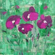 Magenta Poppies Art Print