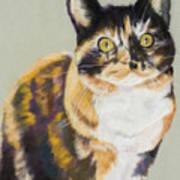 Maggie Mae Art Print