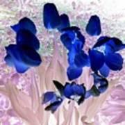 Magical Flower I I Art Print