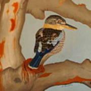 Magnificent Blue-winged Kookaburra Art Print by Brian Leverton