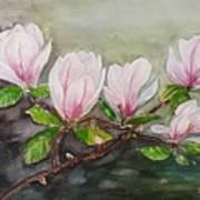 Magnolia Blossom - Painting Art Print