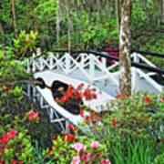 Magnolia Bridge Art Print