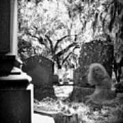 Magnolia Cemetery 75 Art Print