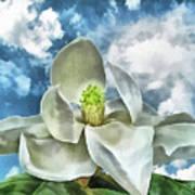 Magnolia Dreams Art Print by Wendy J St Christopher