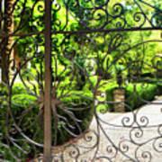 Magnolia Gate Art Print