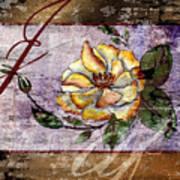 Magnolia In Limbo Dp19 Art Print