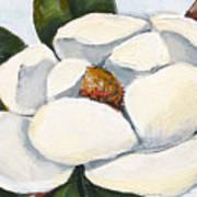Magnolia On Blue Art Print