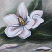 Magnolia Two - 2007 Art Print