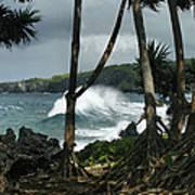 Mahama Lauhala Keanae Peninsula Maui Hawaii Art Print