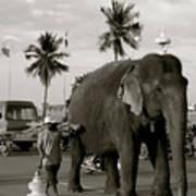 Mahout And Elephant Art Print