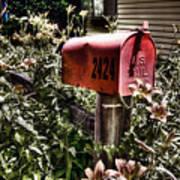 Mailbox Deux Art Print
