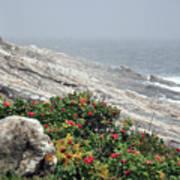 maine 13 Pemaquid Lighthouse Shoreline Before Storm Art Print