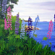 Maine Bay Lupine Flowers Art Print
