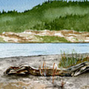 Maine Beach Wood Art Print