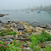 Maine Cove Art Print