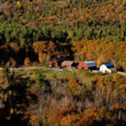 Maine Fall Colors Art Print