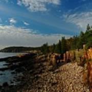 Maine Rocky Coast Art Print